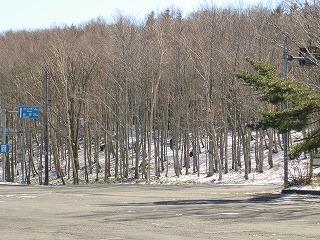 冬の早坂高原!_b0206037_9124572.jpg