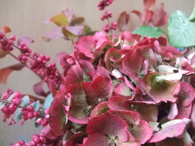 オークリーフ(赤い紫陽花のアレンジメント)_f0049672_14454183.jpg