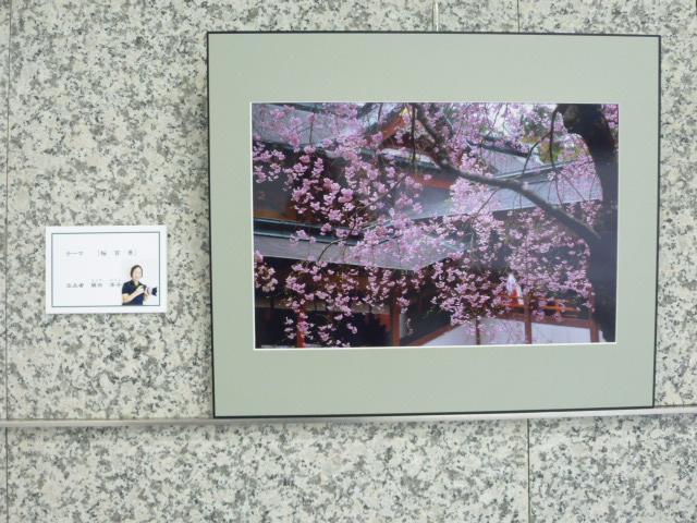 第1回写友「風」写真展 UMKテレビ宮崎ギャラリーで_a0043276_5649100.jpg