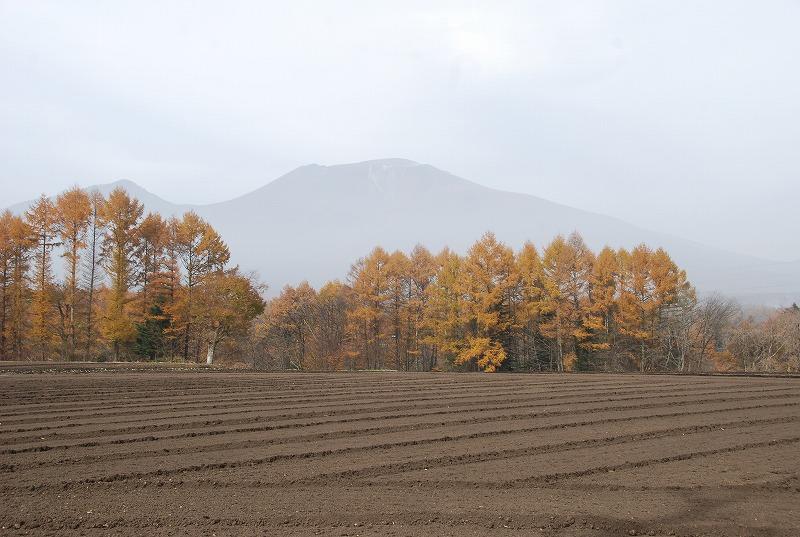 秋の軽井沢_c0187781_1227482.jpg