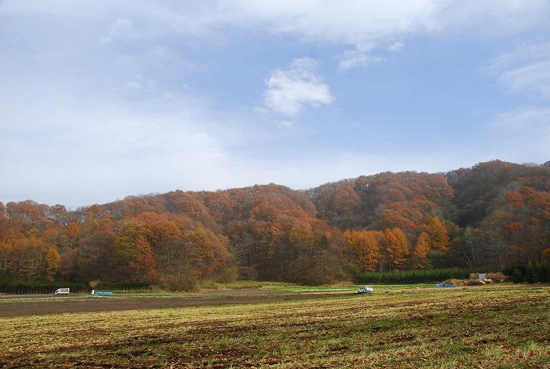 秋の軽井沢_c0187781_12304453.jpg