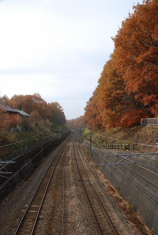 秋の軽井沢_c0187781_12375024.jpg