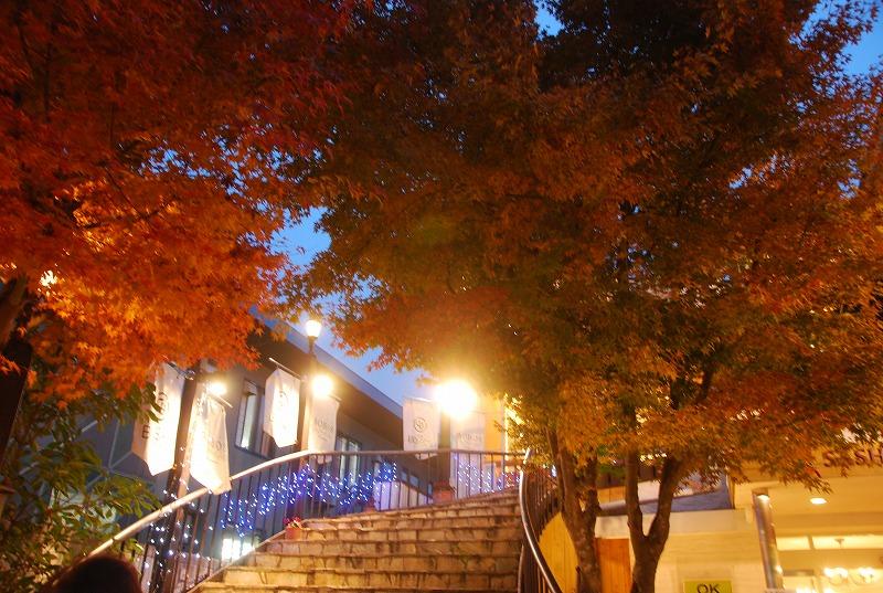秋の軽井沢_c0187781_1311425.jpg