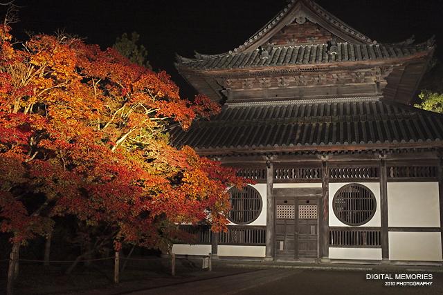 宝福寺 紅葉 ライトアップ 2010_c0083985_7322686.jpg