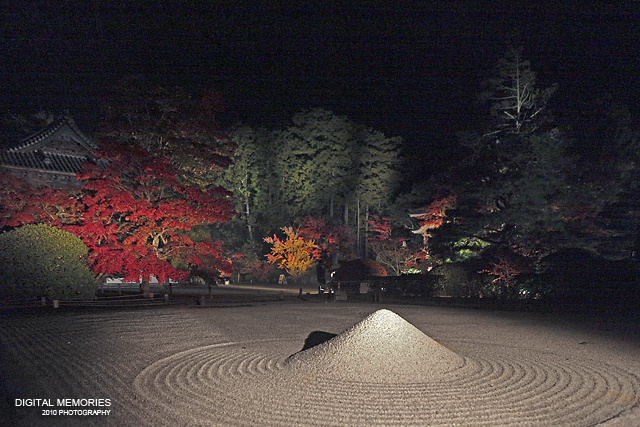宝福寺 紅葉 ライトアップ 2010_c0083985_732388.jpg