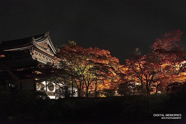宝福寺 紅葉 ライトアップ 2010_c0083985_733590.jpg