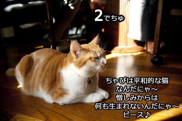 b0141397_1253249.jpg