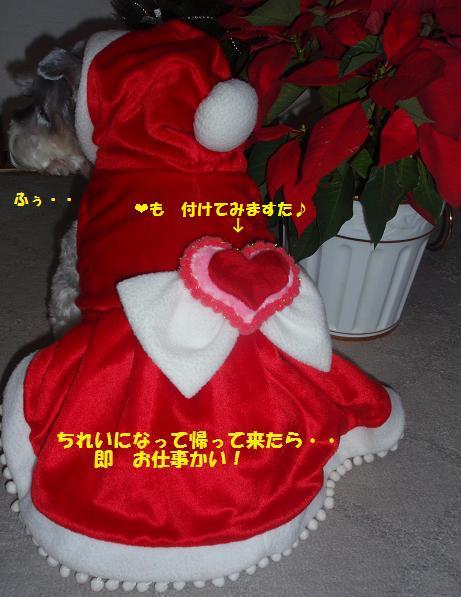 c0098501_19471640.jpg