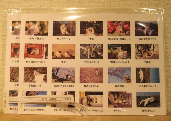 高円寺裏通り猫展 4日目_e0134502_1414634.jpg