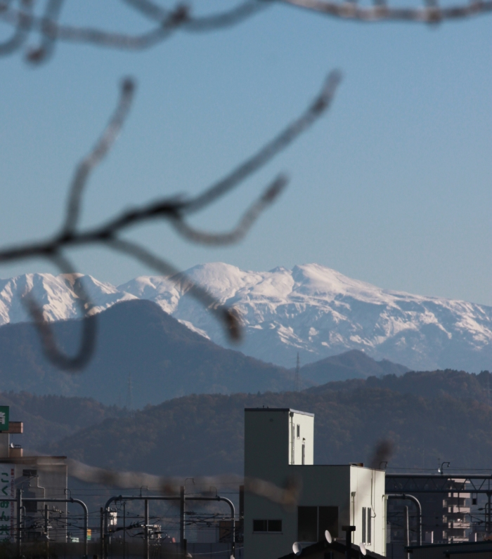 福井市から見る 白く輝く山々_f0229508_1002288.jpg