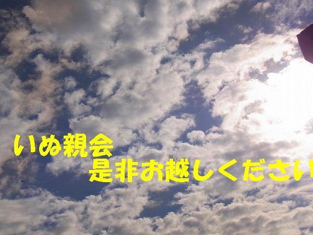 f0218911_14271488.jpg
