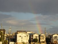 虹を見ました_c0133422_1593328.jpg