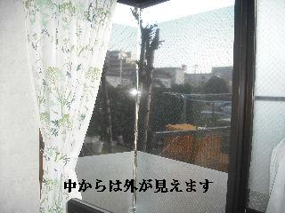 f0031037_18391895.jpg