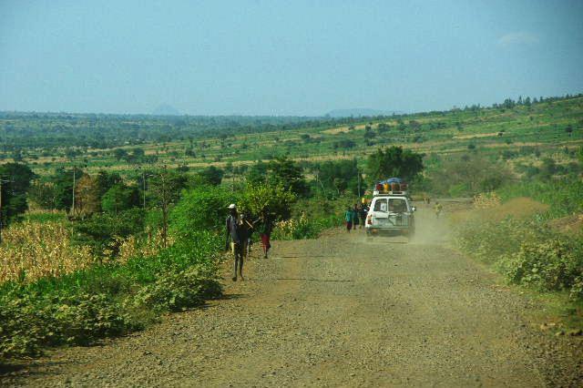 エチオピア(24) アカシアの樹と蜂蜜_c0011649_033116.jpg
