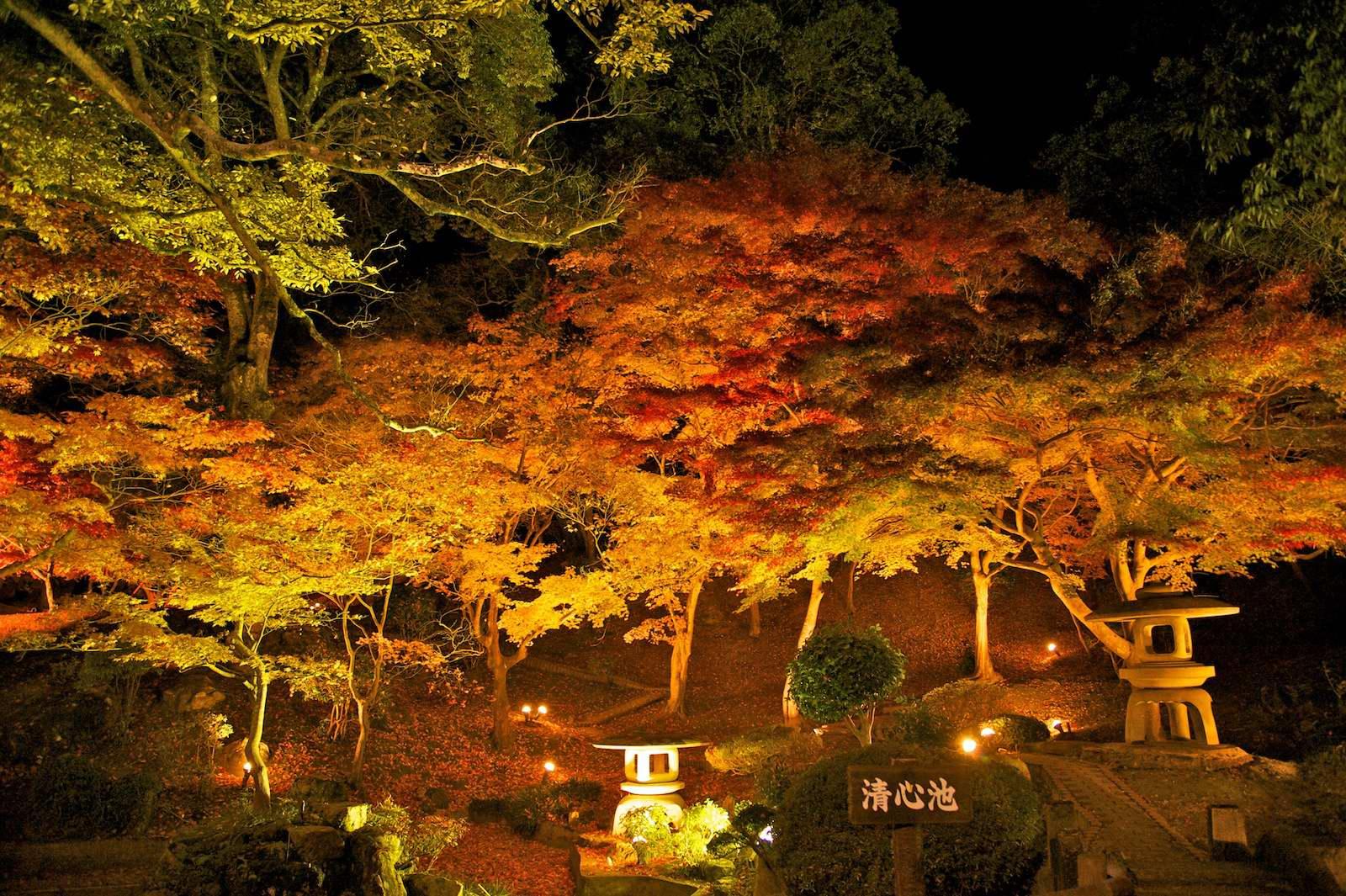 尾関山公園_f0231512_12233535.jpg
