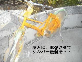 f0031037_20123862.jpg