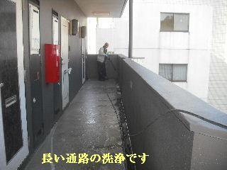 f0031037_2054185.jpg