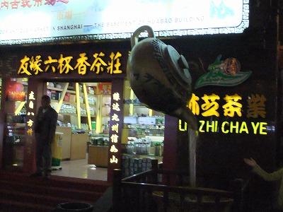 激旅!上海2泊3日2010 (4)~豫園_e0173645_22495737.jpg