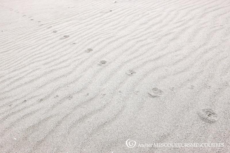吹上浜砂丘_e0194450_827778.jpg