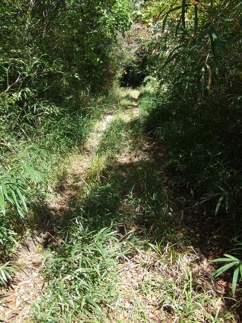 笹ヶ峠(阿戸~八本松町原)を歩く その1_b0095061_1217111.jpg