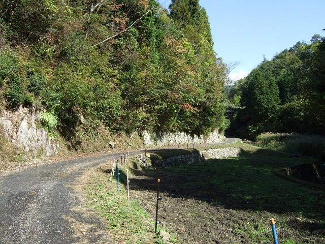 笹ヶ峠(阿戸~八本松町原)を歩く その1_b0095061_1271176.jpg