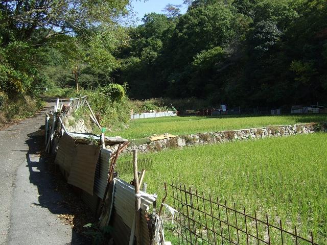 笹ヶ峠(阿戸~八本松町原)を歩く その1_b0095061_1282290.jpg