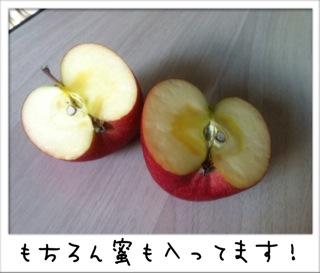 f0168374_178184.jpg