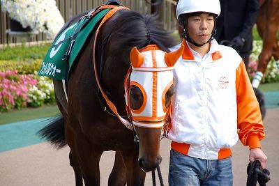 素晴らしい瞬発力!東京スポーツ杯2歳Sはサダムパテックが3馬身半差で圧勝!_b0015386_23212571.jpg