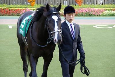 素晴らしい瞬発力!東京スポーツ杯2歳Sはサダムパテックが3馬身半差で圧勝!_b0015386_2321465.jpg