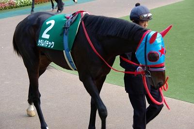 素晴らしい瞬発力!東京スポーツ杯2歳Sはサダムパテックが3馬身半差で圧勝!_b0015386_23214913.jpg