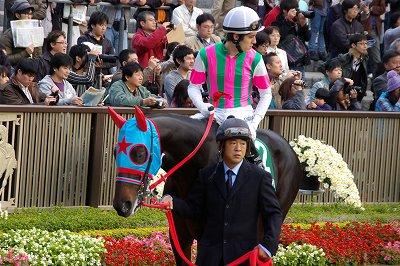 素晴らしい瞬発力!東京スポーツ杯2歳Sはサダムパテックが3馬身半差で圧勝!_b0015386_2322821.jpg