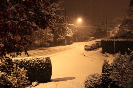 雪!_d0129786_18435494.jpg