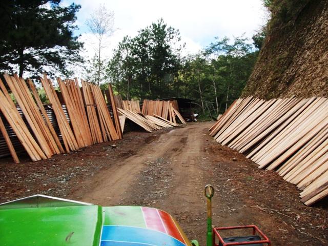 ボントク~パラセレス・ロード 台風JUANによる土砂崩れ_b0128901_10224373.jpg