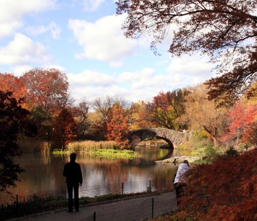 セントラルパーク紅葉お散歩コース (1) Pond周辺_b0007805_174686.jpg