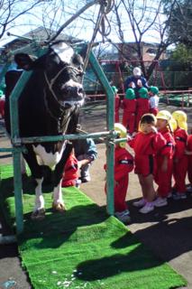 そろそろこの季節です!幼稚園保育園でちちしぼり体験!_b0188106_23132752.png