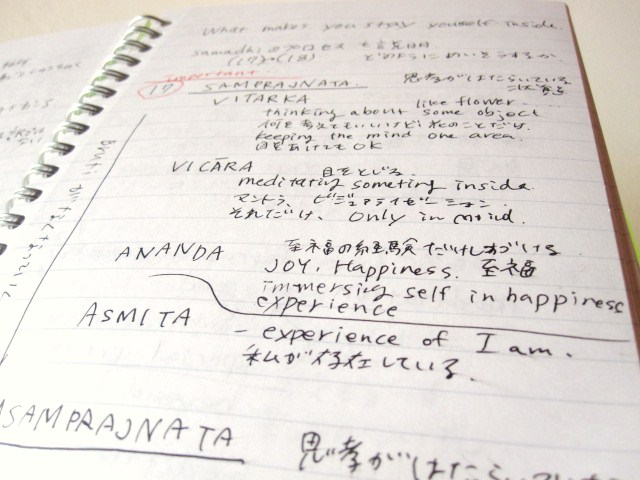 2010年11月21日_f0207707_12123318.jpg