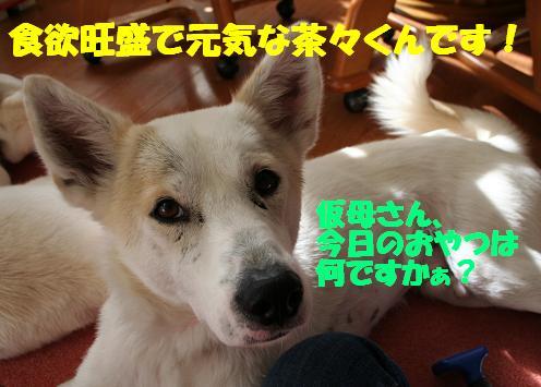 f0121712_12131359.jpg