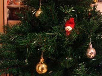 我が家のクリスマスツリー_a0166313_20161442.jpg