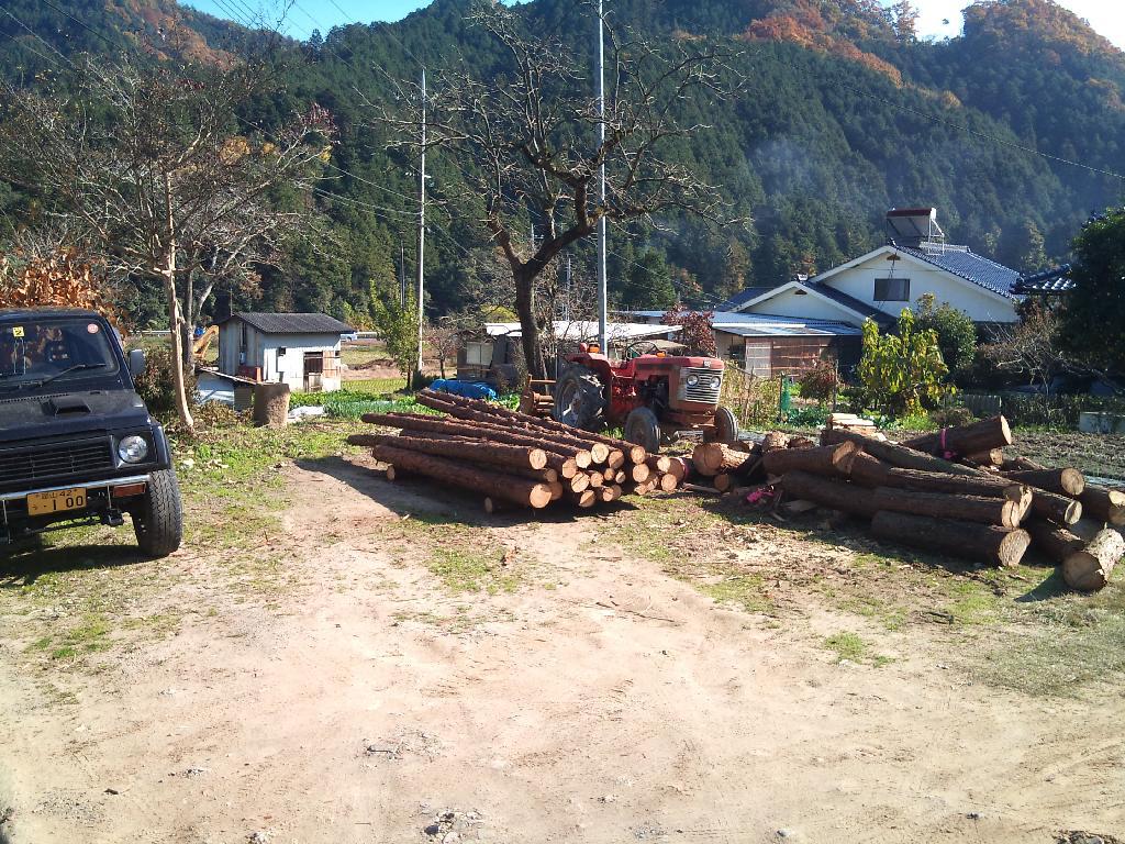 郡山(こおりやま)間伐作業最後の仕上げ_d0190318_13295770.jpg