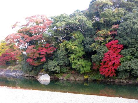 伊勢神宮 紅葉 散策 Ⅱ_f0129726_18202674.jpg