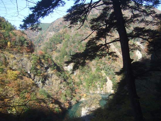 寸又峡渓谷散策!....SL列車にも...._b0137932_1151256.jpg