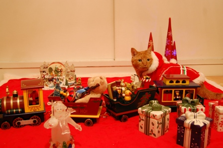 クリスマスカメラマン猫 空しぇるのぇるろった編。_a0143140_2161613.jpg