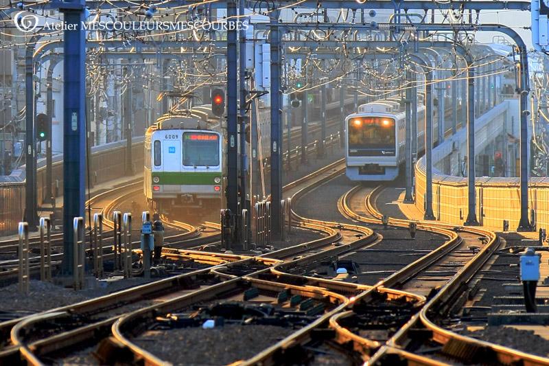 電車は、自由に線路を選べない_e0194450_1365419.jpg