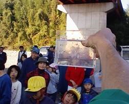 今川 2010.11.21「小さな命」救出作戦_f0197754_2333723.jpg