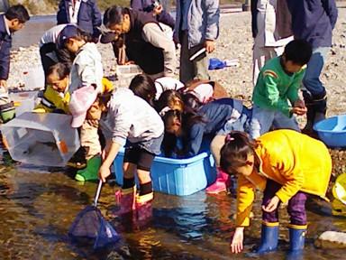 今川 2010.11.21「小さな命」救出作戦_f0197754_2395039.jpg