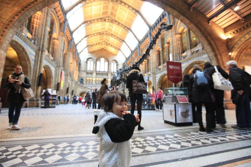 ロンドン自然史博物館_c0187779_23501366.jpg