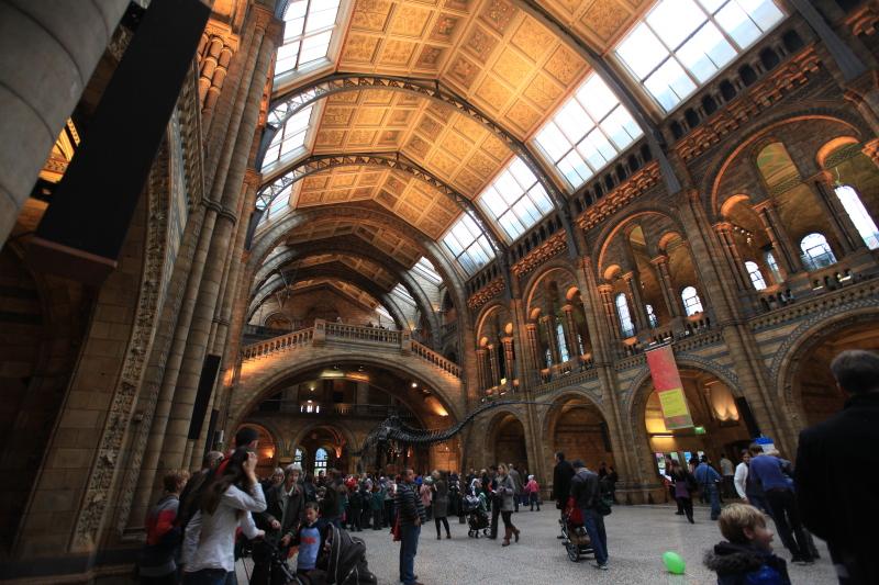 ロンドン自然史博物館_c0187779_23503582.jpg