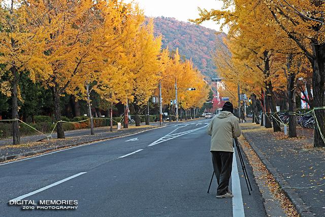 岡山大学 紅葉_c0083985_1228921.jpg