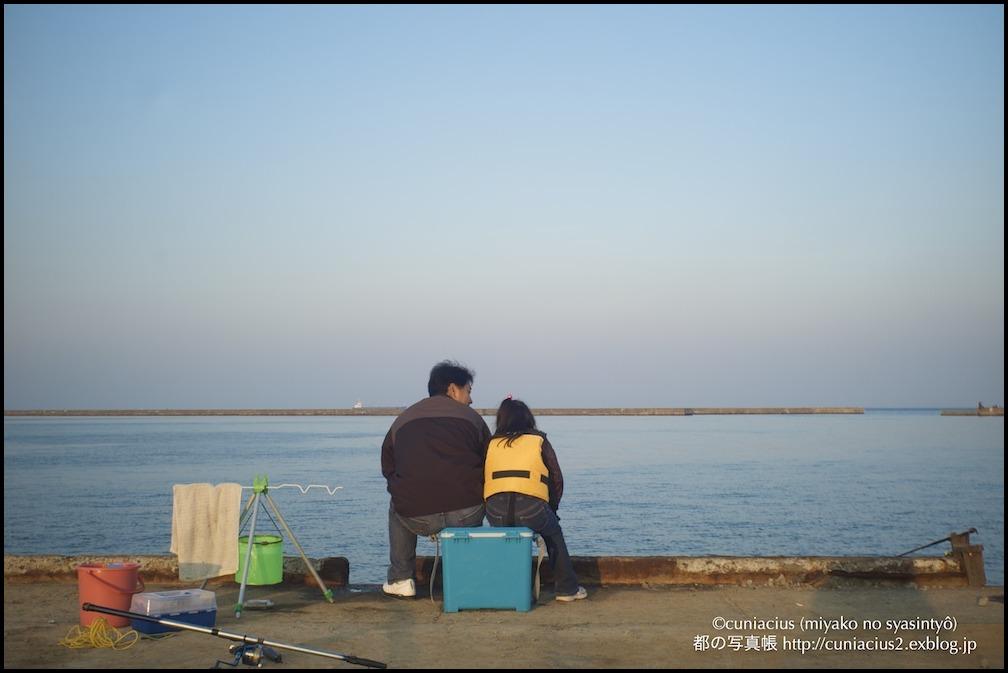 勝納埠頭の家族の釣り_f0042194_22501934.jpg