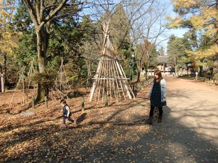 長岡悠久山公園 2010 秋_a0128408_1821524.jpg